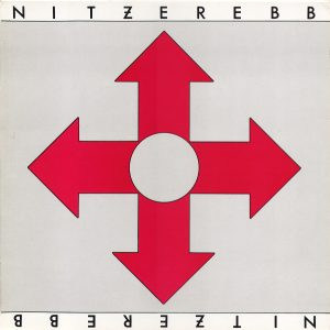 Nitzer Ebb - Isn't It Funny How Your Body Works (Cover)