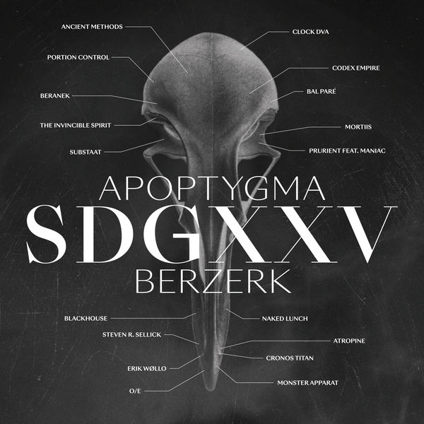 Apoptygma Berzerk - SDGXXV (Cover)
